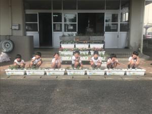 一倉小学校1
