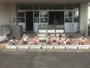 一倉小学校2